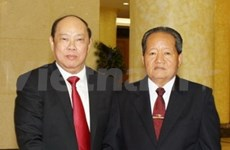 Vietnamese, Lao officials discuss inspection work