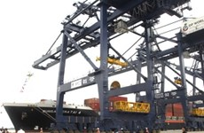 HCM City opens new container port