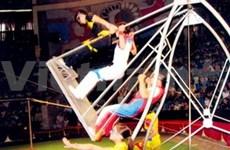 Vietnamese circus wins int'l plaudits