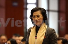 Still more to be done on VN gender equality, says UN official