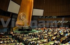 Vietnam backs UN efforts for system-wide coherence
