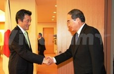 Vietnam looks to boost ties with Japan