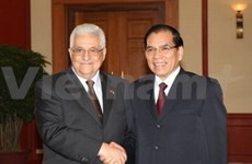 Vietnam supports Palestine's fight for basic national rights