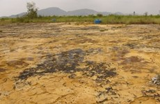 5 mln USD for dioxin cleanup in Vietnam