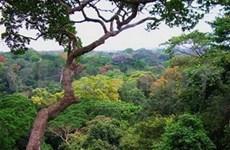 VN, Laos swap environmental protection experiences