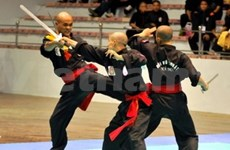 Central city to host int'l martial arts festival