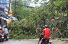 Tropical storm Conson injures three people