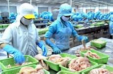 Seafood export values to increase