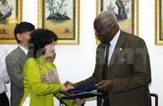 VN, Central Africa cooperate in vocational training
