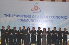 Da Nang hosts series of AEM consultations