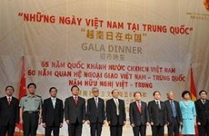 Vietnamese Days in China opens