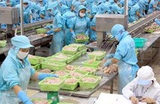 Tra fish among US's top ten popular seafood products
