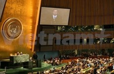 UN hails Vietnam's contributions to MDGs
