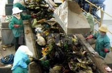 Int'l research firm sees potential in VN's solid waste market
