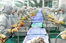 WTO begins hearing on Vietnam's shrimp lawsuit