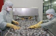 First hearing on Vietnam's shrimp lawsuit concludes
