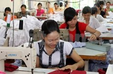 Vietnam, Russia expect 3 bln USD in trade in 2012