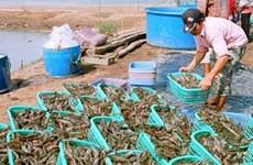 Aquatic breeding helps reduce poverty