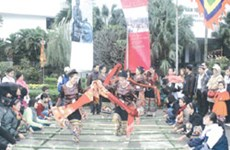 Ethnology museum celebrates Tet with diverse programme