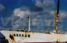 Somali pirates free three Vietnamese sailors