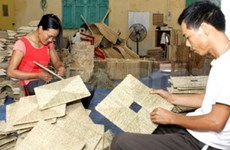 Denmark helps Vietnamese businesses to compete