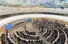 VN seeks UN Human Rights Council membership