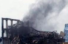 Radiation 1,600 times normal near Fukushima