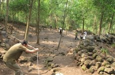 Workshop on Truong Luy site in Quang Ngai