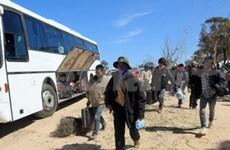 Last Vietnamese workers return home from Libya