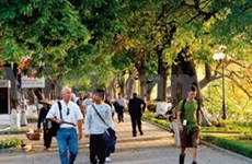 More ASEAN tourists interested in Vietnam