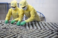 Vietnam boosts fisheries cooperation with Malaysia, Indonesia