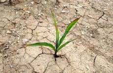 VN backs global framework on climate services