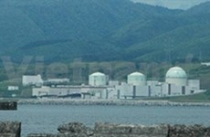 Japan restarts first reactor since March quake