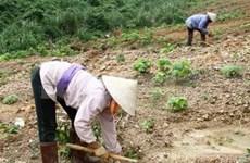 Vietnam records good environmental performance