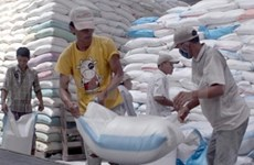 Nation exports over 5.8 mln tonnes of rice in nine months