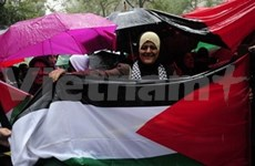 VN supports Palestine's UN full membership