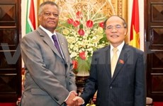 VN, S Africa boost legislative cooperation