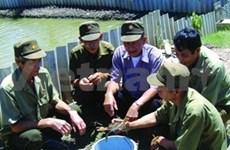 PM works with Vietnam war veterans
