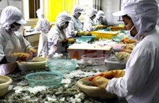 VN, US hold consultations on frozen shrimp lawsuit
