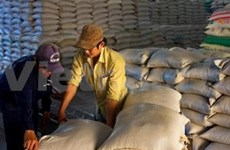 ASEAN countries look to export more rice