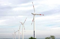 Vietnam's first wind farm goes on line
