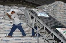 VN targets over 1.3 mln tonnes of sugar