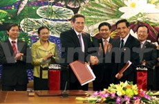 CPA to assist auditing/accounting services in VN
