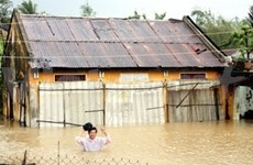 Japan funds climate change project in Mekong Delta