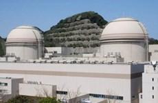 Japan starts up nuclear reactor at Fukushima