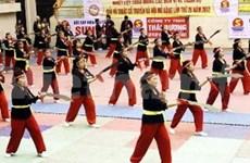 Binh Dinh to host int'l martial arts festival
