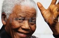Vietnam marks Nelson Mandela Day