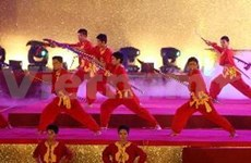 Int'l martial arts festival opens in Binh Dinh