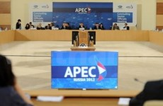 Vietnam aims for higher role in APEC