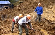 Landslide kills at least 17 in Yen Bai